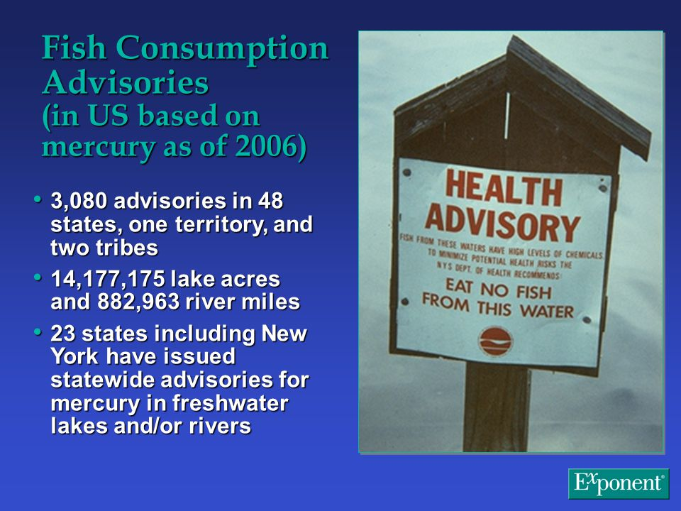 Fish Consumption Advisories (in US based on mercury as of 2006) 3,080 advisories in 48 states, one territory, and two tribes 3,080 advisories in 48 states, one territory, and two tribes 14,177,175 lake acres and 882,963 river miles 14,177,175 lake acres and 882,963 river miles 23 states including New York have issued statewide advisories for mercury in freshwater lakes and/or rivers 23 states including New York have issued statewide advisories for mercury in freshwater lakes and/or rivers