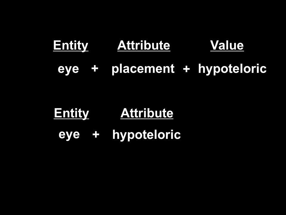 eyeplacementhypoteloric+ + eye hypoteloric+ EntityAttributeValue EntityAttribute