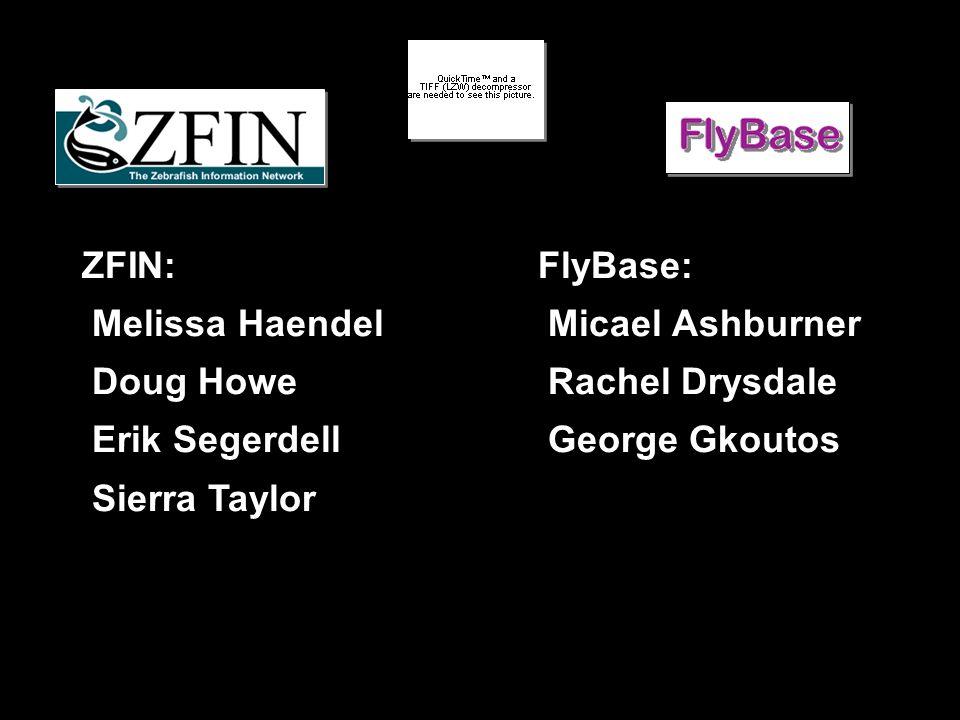 ZFIN: Melissa Haendel Doug Howe Erik Segerdell Sierra Taylor FlyBase: Micael Ashburner Rachel Drysdale George Gkoutos