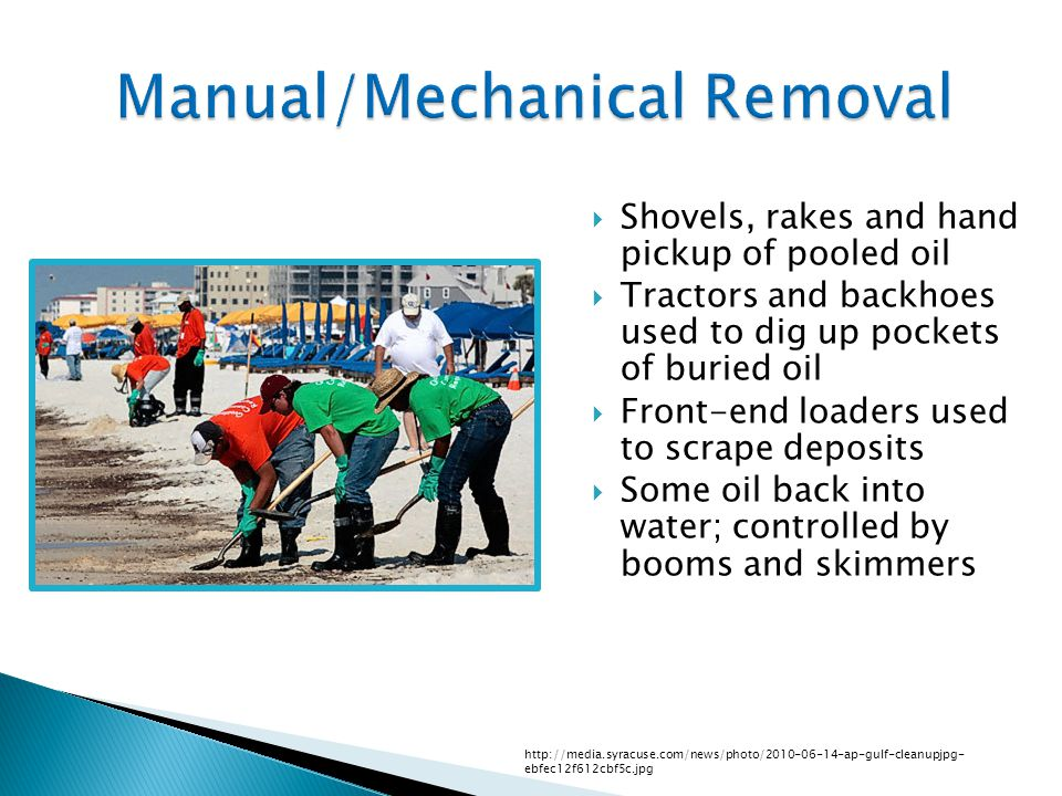 Manual/Mechanical Removal  Shovels, rakes and hand pickup of pooled oil  Tractors and backhoes used to dig up pockets of buried oil  Front-end loaders used to scrape deposits  Some oil back into water; controlled by booms and skimmers http://media.syracuse.com/news/photo/2010-06-14-ap-gulf-cleanupjpg- ebfec12f612cbf5c.jpg