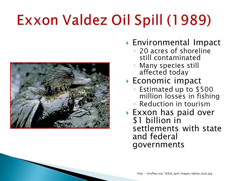 Exxon Valdez Oil Spill (1989)  Environmental Impact ◦ 20 acres of shoreline still contaminated ◦ Many species still affected today  Economic impact ◦ Estimated up to $500 million losses in fishing ◦ Reduction in tourism  Exxon has paid over $1 billion in settlements with state and federal governments http://whyfiles.org/168oil_spill/images/valdez_duck.jpg