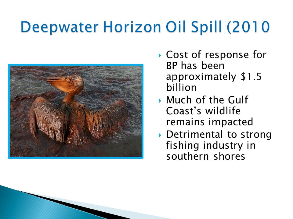 Deepwater Horizon Oil Spill (2010  Cost of response for BP has been approximately $1.5 billion  Much of the Gulf Coast's wildlife remains impacted  Detrimental to strong fishing industry in southern shores