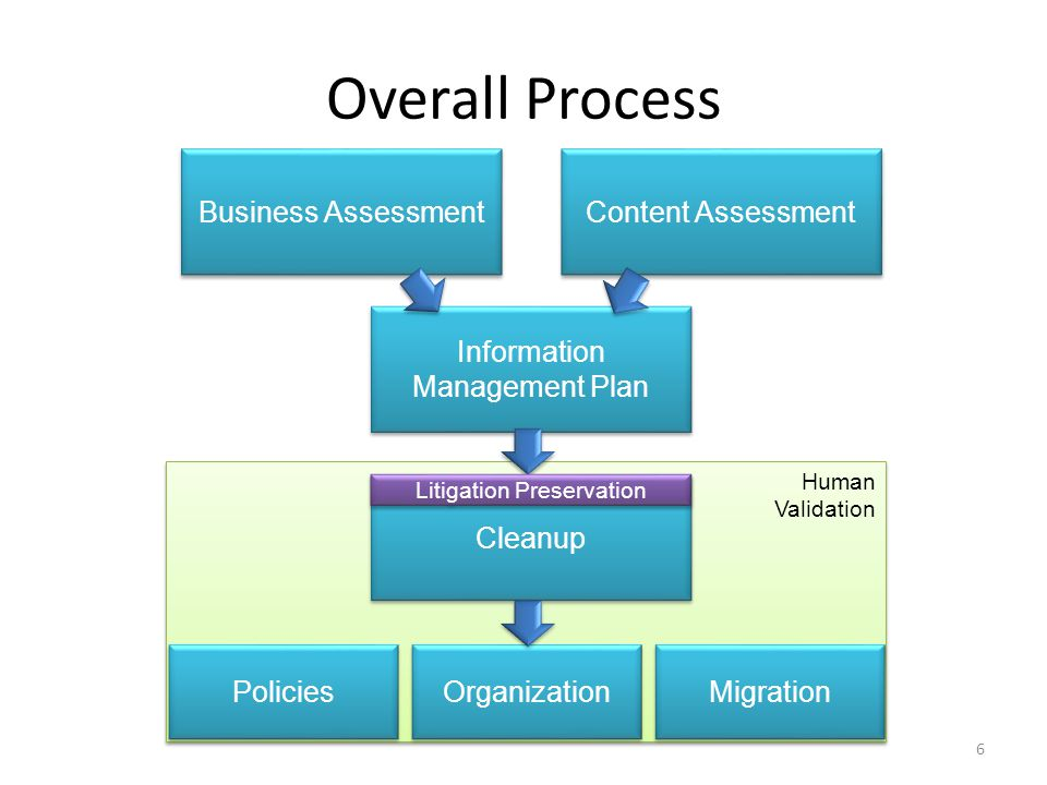 Overall Process Business Assessment Content Assessment Information Management Plan Human Validation Human Validation Cleanup Policies Litigation Prese