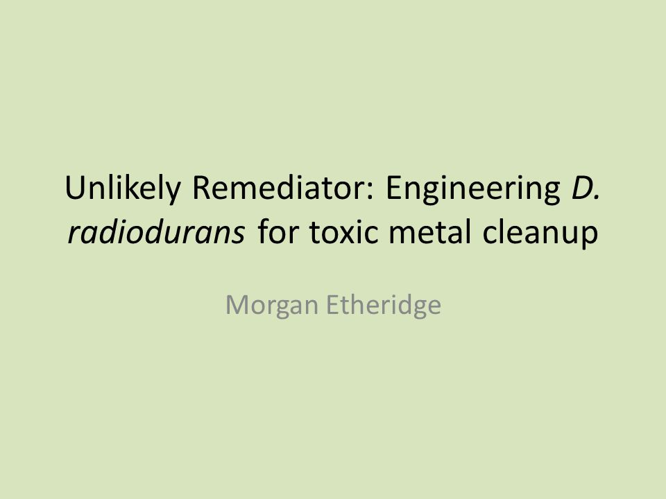 Unlikely Remediator: Engineering D. radiodurans for toxic metal cleanup Morgan Etheridge