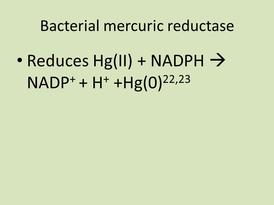 Bacterial mercuric reductase Reduces Hg(II) + NADPH  NADP + + H + +Hg(0) 22,23