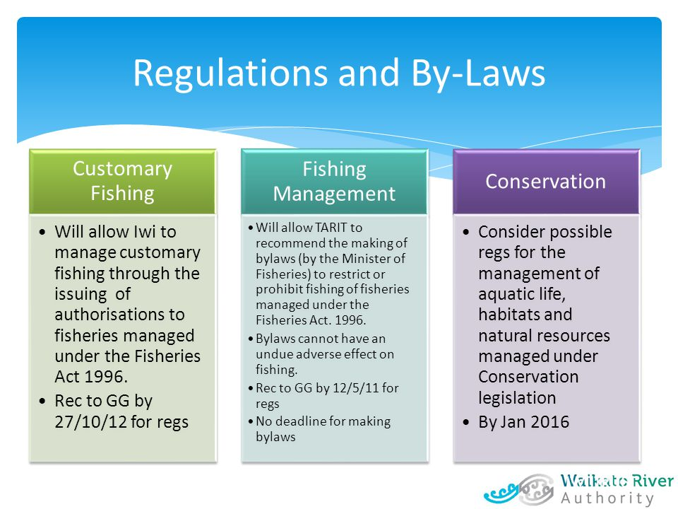 Customary Fishing Will allow Iwi to manage customary fishing through the issuing of authorisations to fisheries managed under the Fisheries Act 1996.