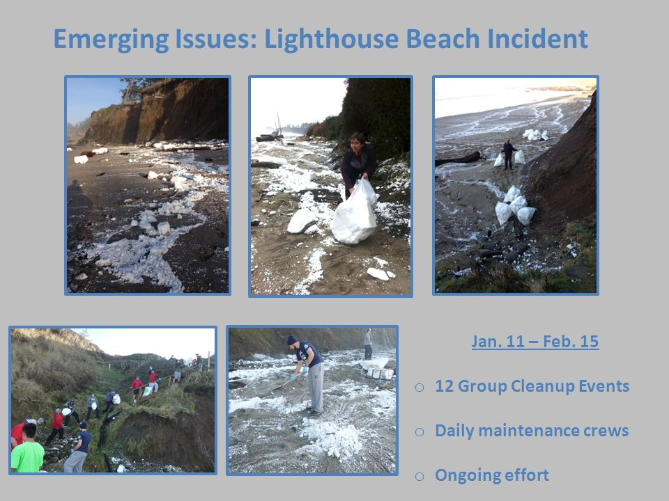 Emerging Issues: Lighthouse Beach Incident Jan. 11 – Feb.