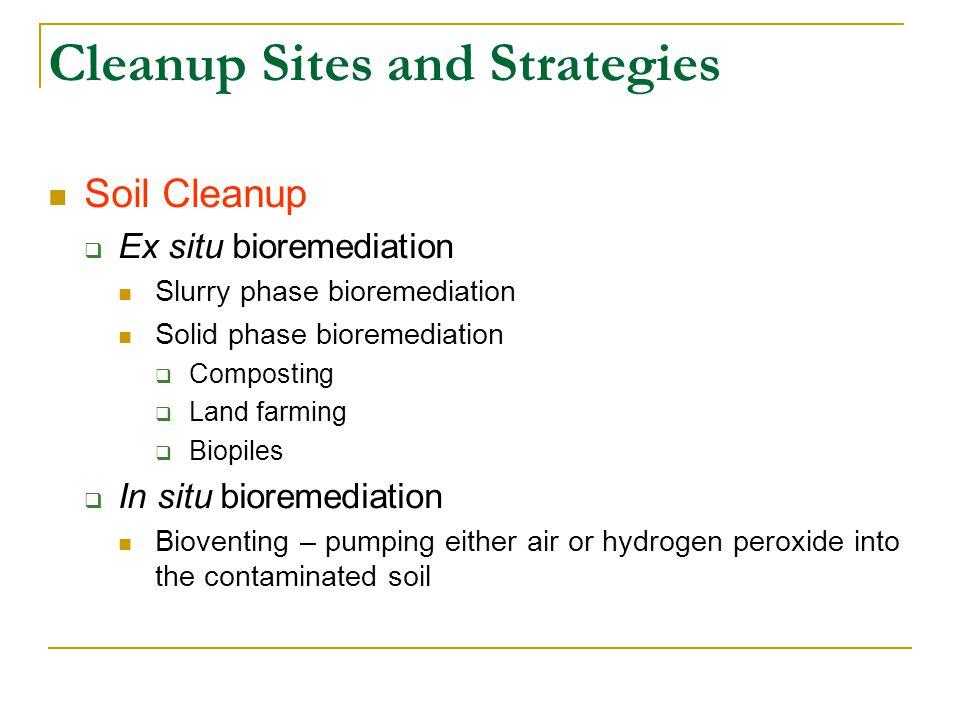Cleanup Sites and Strategies Soil Cleanup  Ex situ bioremediation Slurry phase bioremediation Solid phase bioremediation  Composting  Land farming