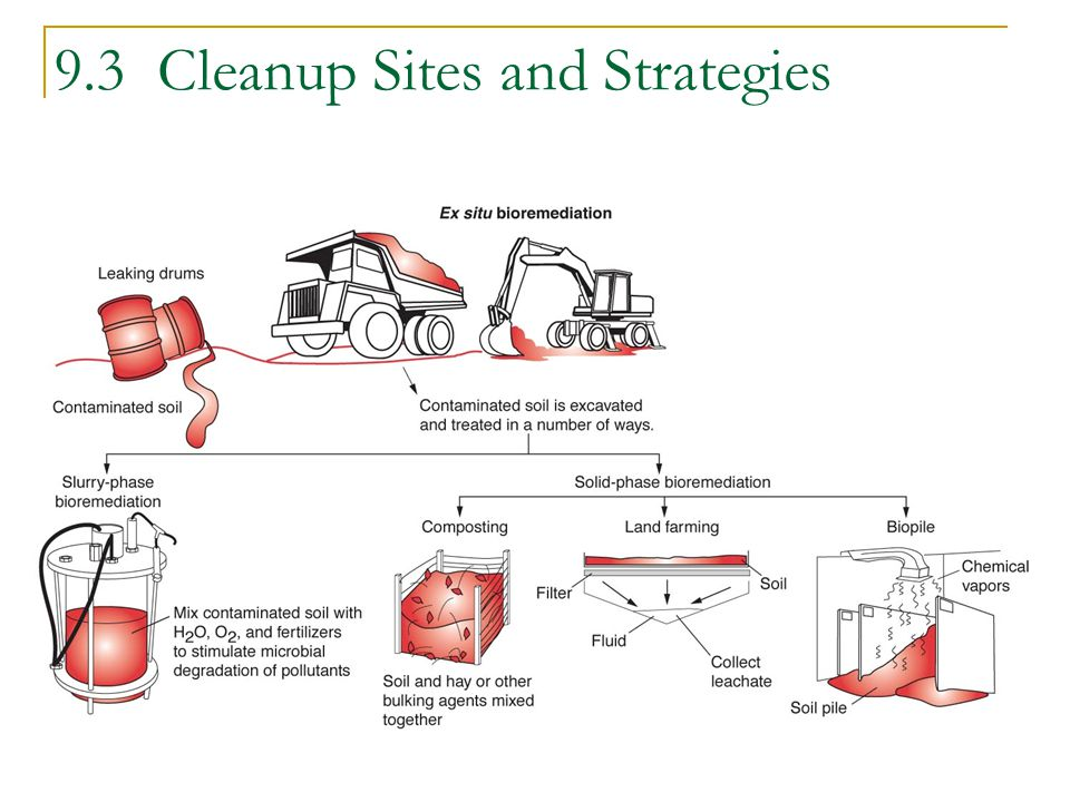 9.3 Cleanup Sites and Strategies