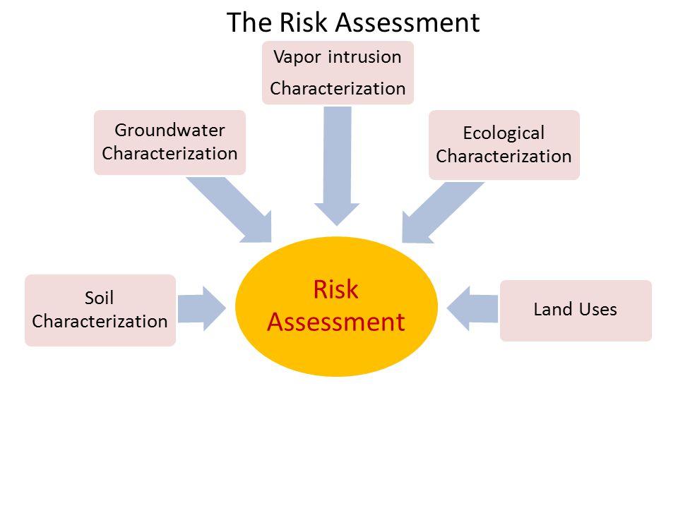 The Risk Assessment
