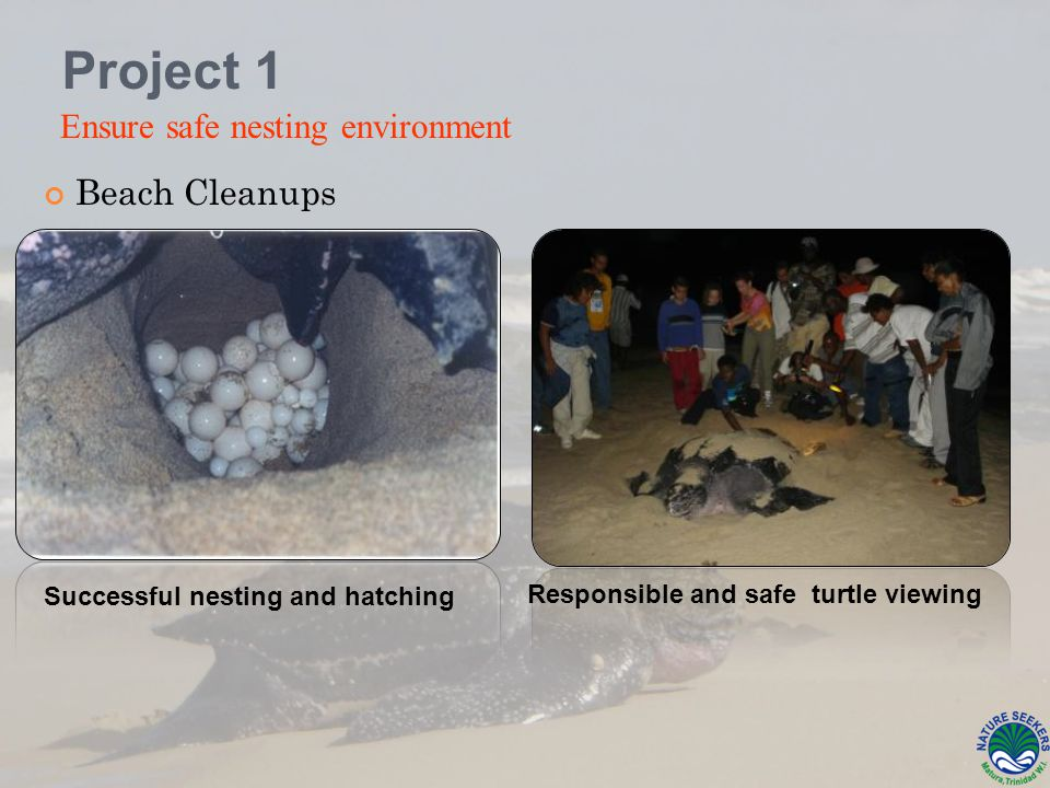 Beach Cleanups Responsible and safe turtle viewing Project 1 Ensure safe nesting environment Successful nesting and hatching
