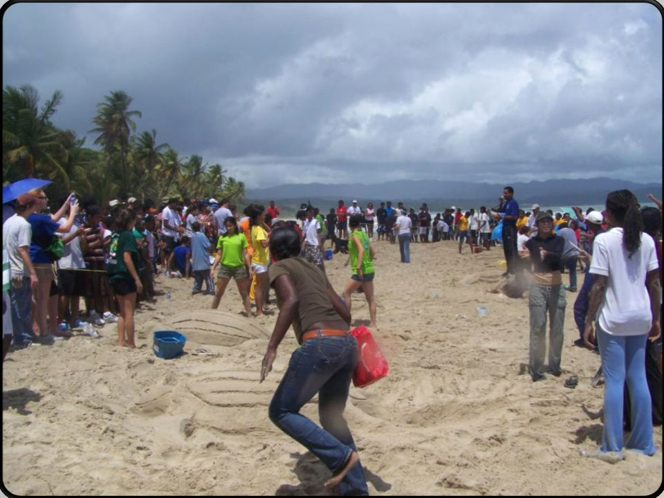 Beach Cleanup Activities Sand Turtle Competition Education