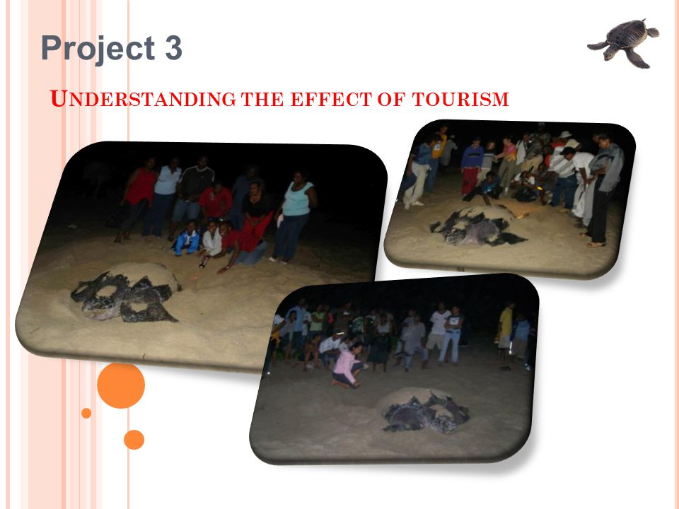 Project 3 U NDERSTANDING THE EFFECT OF TOURISM