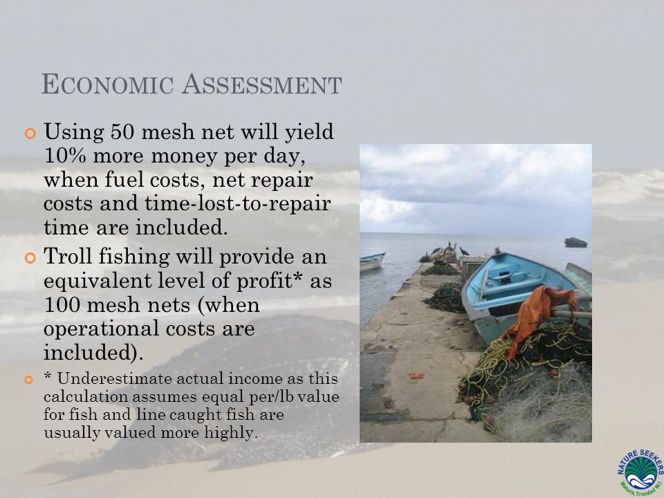 E CONOMIC A SSESSMENT Using 50 mesh net will yield 10% more money per day, when fuel costs, net repair costs and time-lost-to-repair time are included.