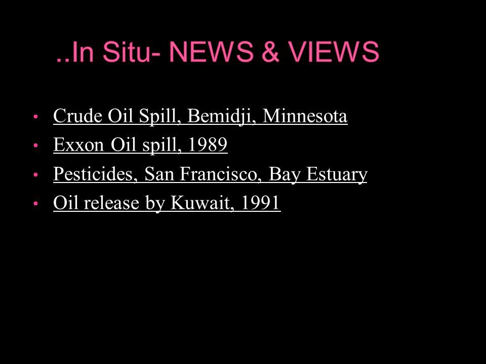 Crude Oil Spill, Bemidji, Minnesota Crude Oil Spill, Bemidji, Minnesota Exxon Oil spill, 1989 Exxon Oil spill, 1989 Pesticides, San Francisco, Bay Estuary Pesticides, San Francisco, Bay Estuary Oil release by Kuwait, 1991 Oil release by Kuwait, 1991