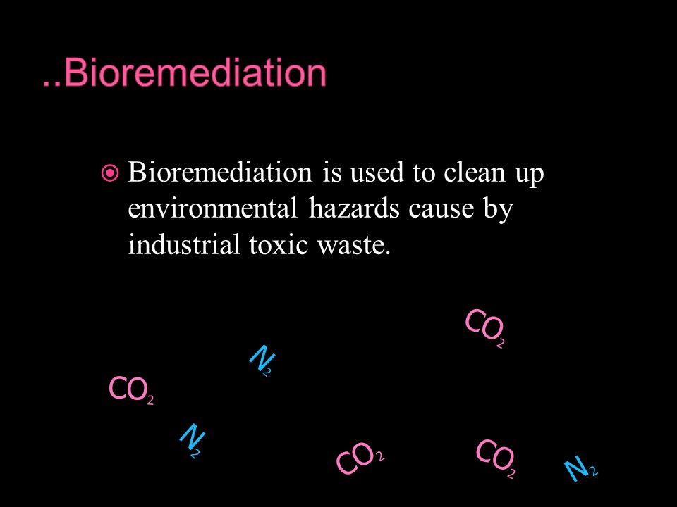  Bioremediation is used to clean up environmental hazards cause by industrial toxic waste.