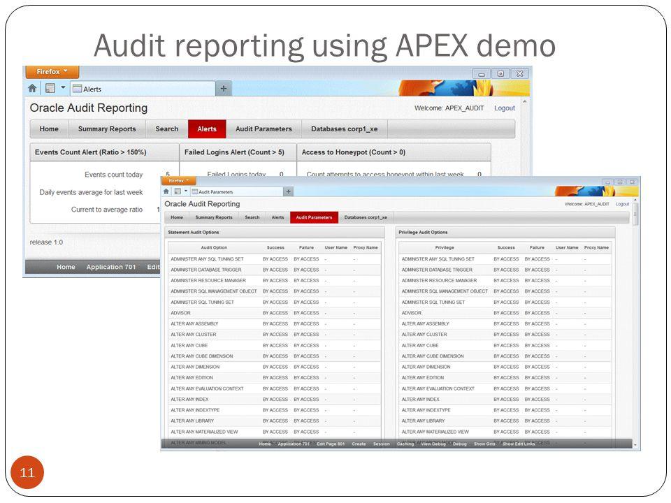 Audit reporting using APEX demo 11
