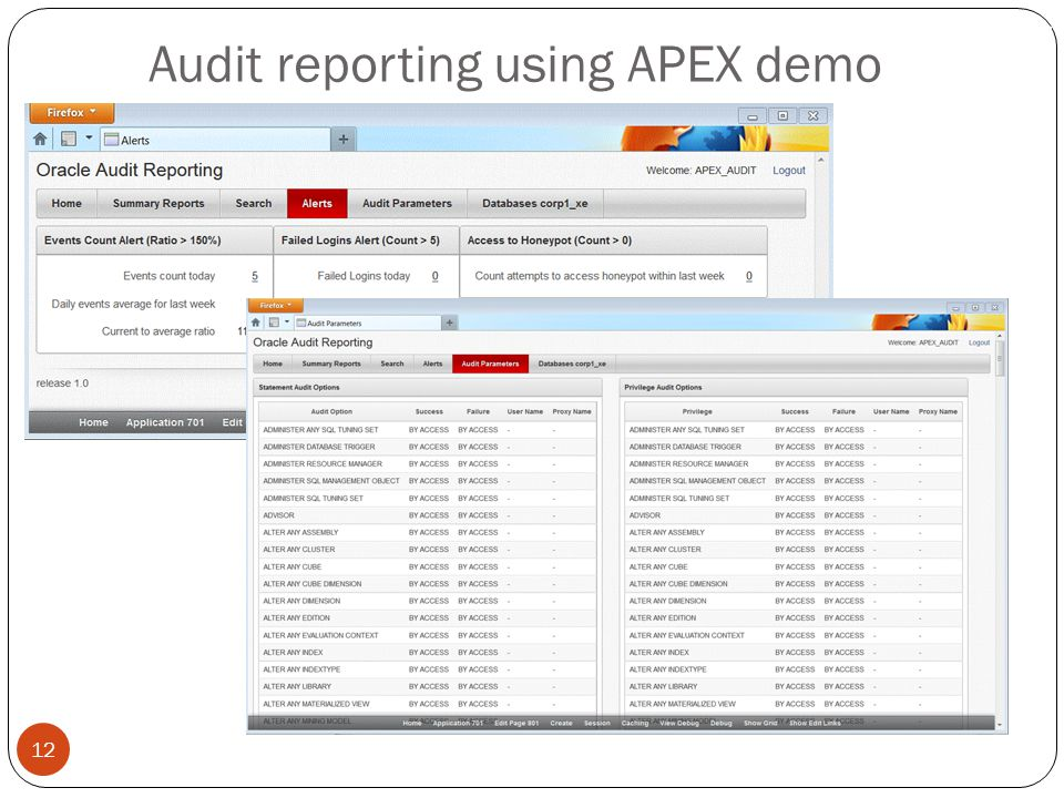 Audit reporting using APEX demo 12