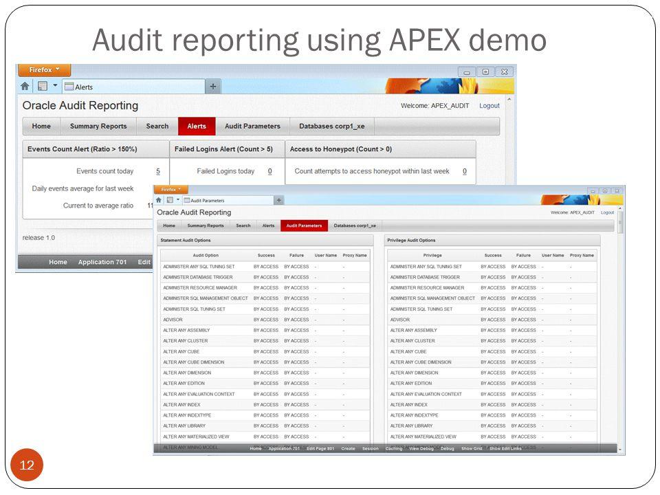 Audit reporting using APEX demo 12