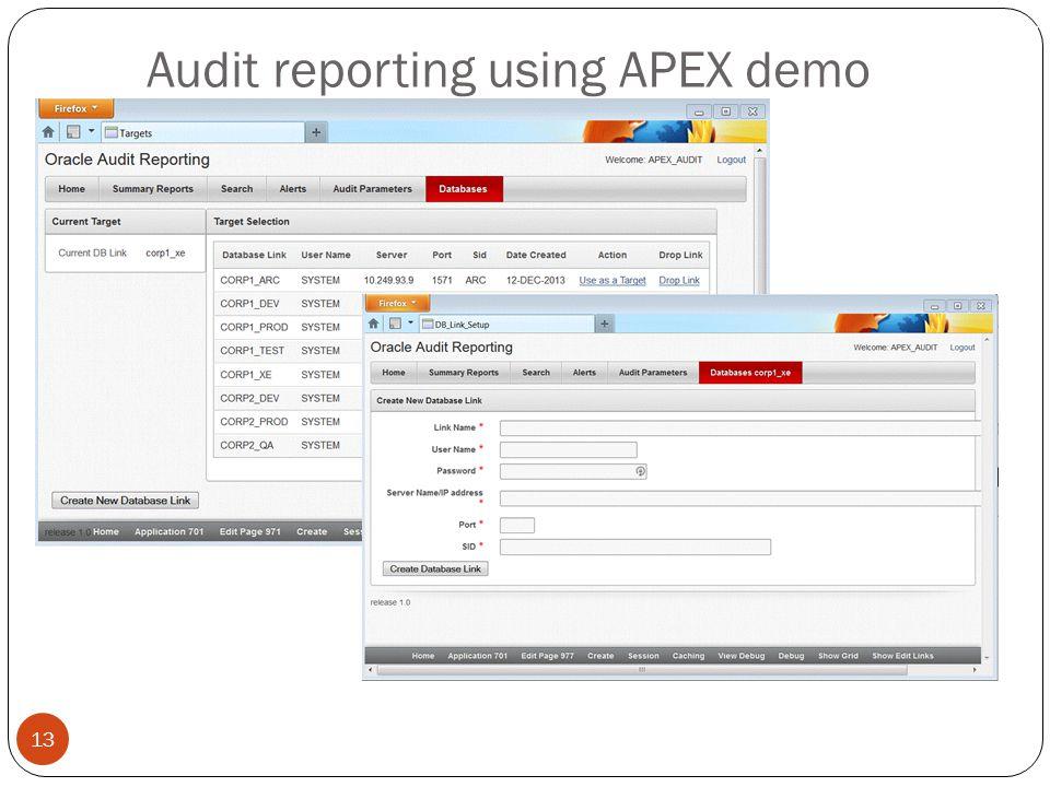 Audit reporting using APEX demo 13