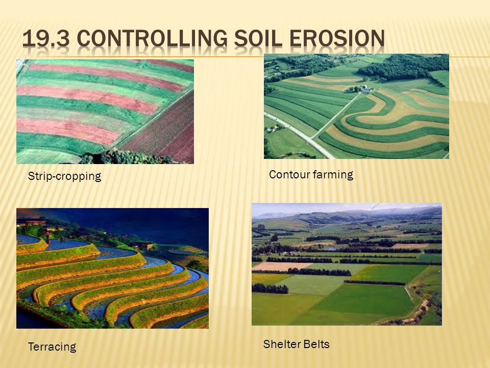 Strip-cropping Contour farming Terracing Shelter Belts