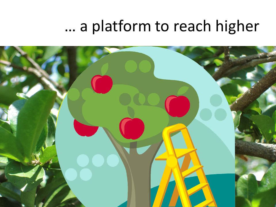 … a platform to reach higher 57