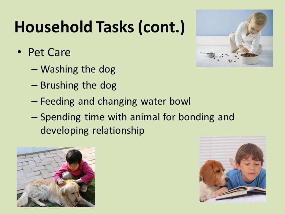 Household Tasks (cont.) Pet Care – Washing the dog – Brushing the dog – Feeding and changing water bowl – Spending time with animal for bonding and developing relationship