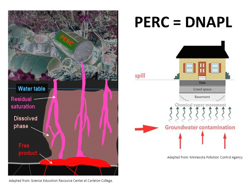 PERC Adapted from: Science Education Resource Center at Carleton College. Adapted from: Minnesota Pollution Control Agency PERC = DNAPL