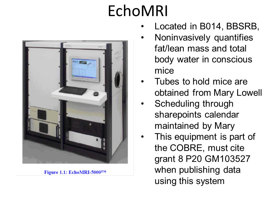 EchoMRI Located in B014, BBSRB, Noninvasively quantifies fat/lean mass and total body water in conscious mice Tubes to hold mice are obtained from Mary Lowell Scheduling through sharepoints calendar maintained by Mary This equipment is part of the COBRE, must cite grant 8 P20 GM103527 when publishing data using this system