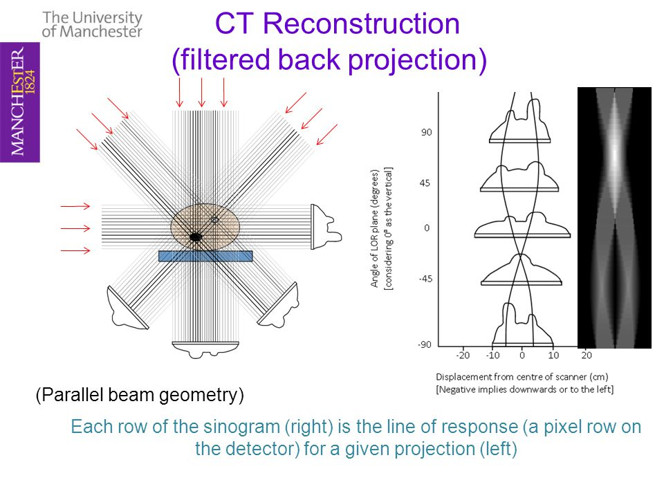 CT Reconstruction (filtered back projection) Each row of the sinogram (right) is the line of response (a pixel row on the detector) for a given projection (left) (Parallel beam geometry)