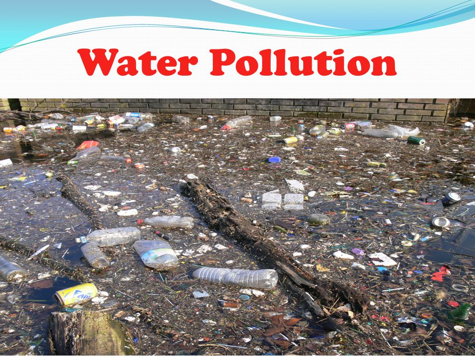 Hazards To Humans Humans are affected by water pollution.
