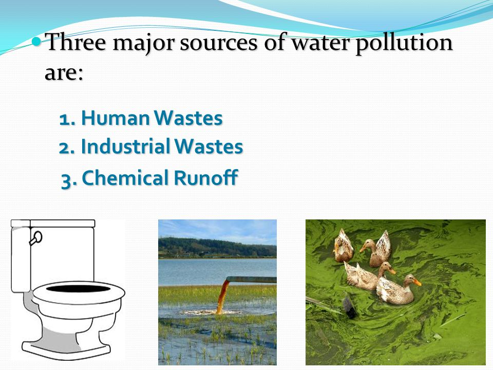 Human Waste Sewage in cities During heavy rains or floods, sanitary sewers sometimes overflow and can pollute the surface water.