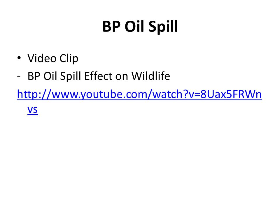 BP Oil Spill Video Clip -BP Oil Spill Effect on Wildlife http://www.youtube.com/watch?v=8Uax5FRWn vs