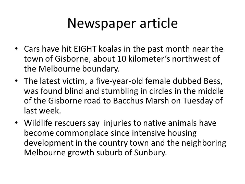 Newspaper article Cars have hit EIGHT koalas in the past month near the town of Gisborne, about 10 kilometer's northwest of the Melbourne boundary. Th