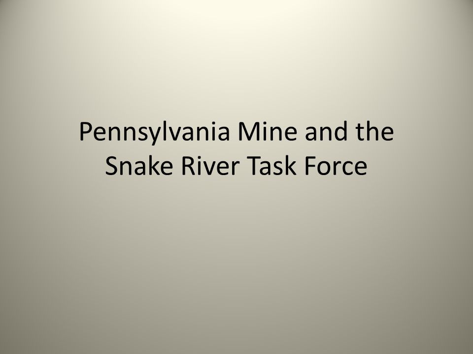 Pennsylvania Mine and the Snake River Task Force