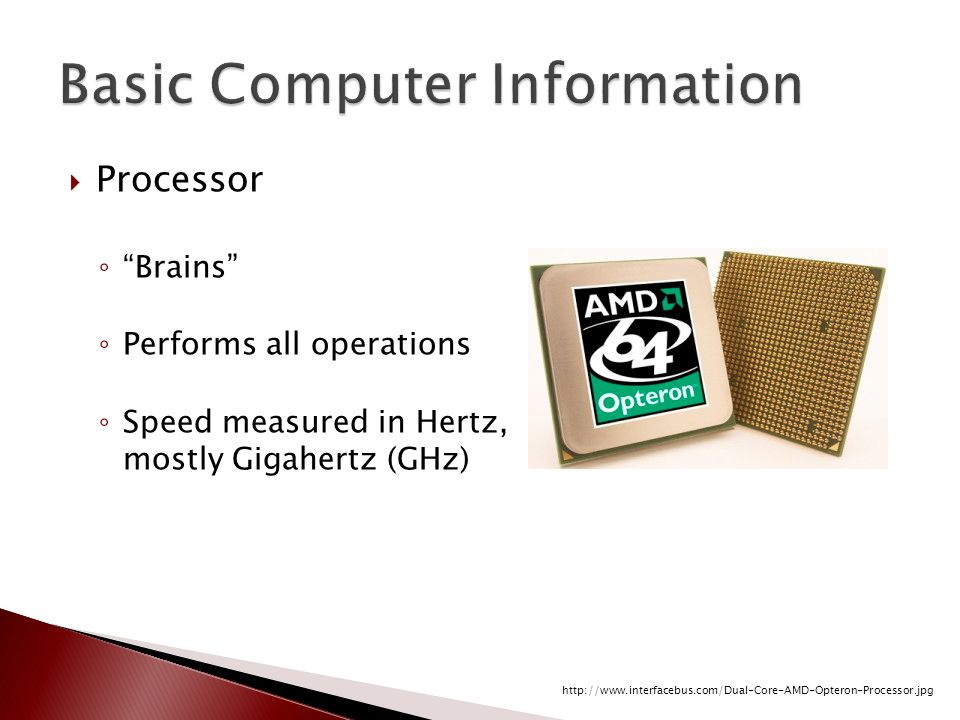  Processor ◦ Brains ◦ Performs all operations ◦ Speed measured in Hertz, mostly Gigahertz (GHz) http://www.interfacebus.com/Dual-Core-AMD-Opteron-Processor.jpg