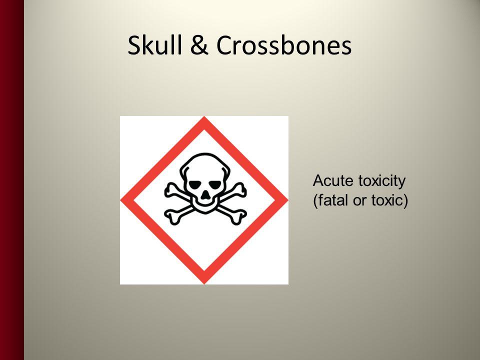 Skull & Crossbones Acute toxicity (fatal or toxic)