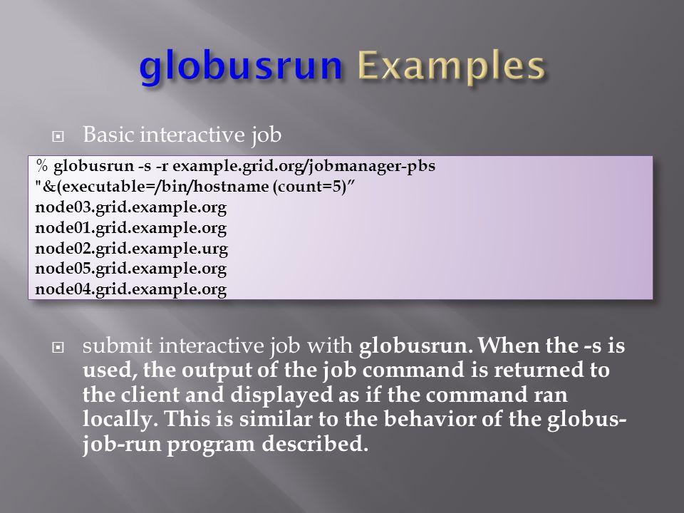  Basic interactive job  submit interactive job with globusrun.