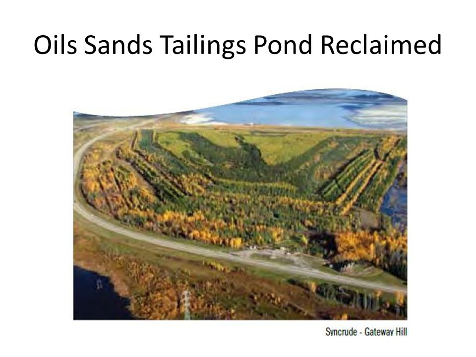 Oils Sands Tailings Pond Reclaimed