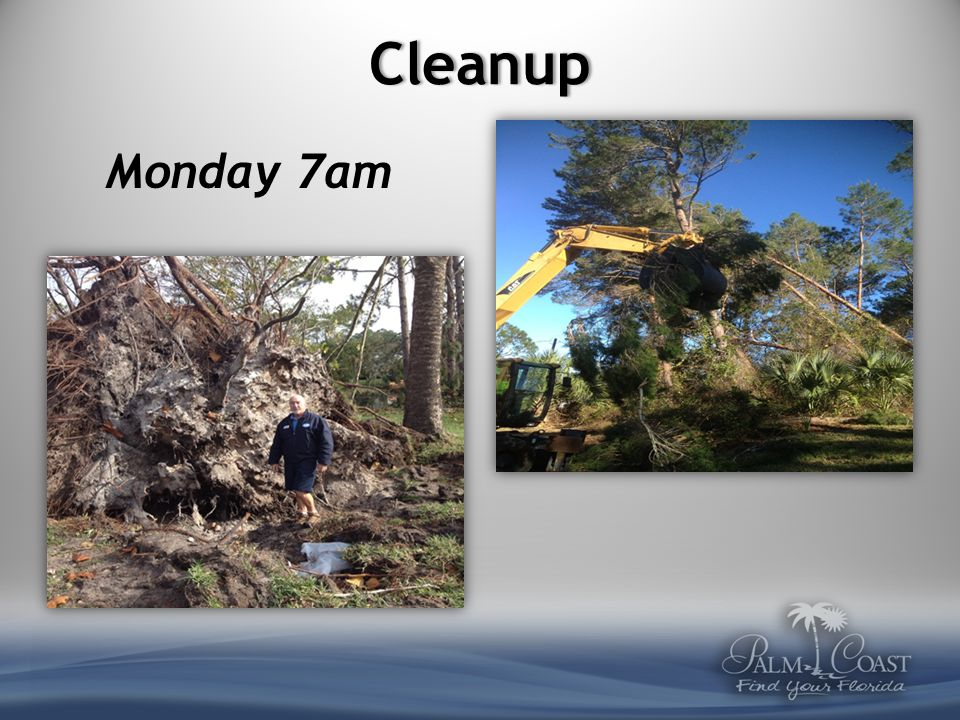 Cleanup Wednesday 7am Clear canals of uprooted trees, debris