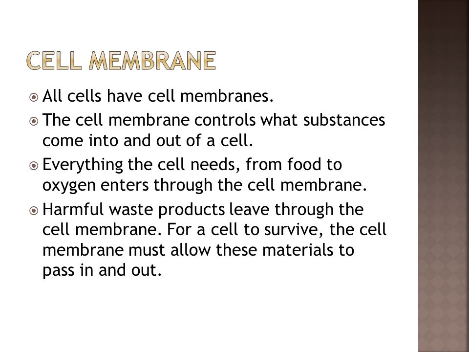  All cells have cell membranes.  The cell membrane controls what substances come into and out of a cell.  Everything the cell needs, from food to o