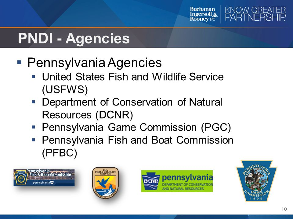 10 PNDI - Agencies  Pennsylvania Agencies  United States Fish and Wildlife Service (USFWS)  Department of Conservation of Natural Resources (DCNR)