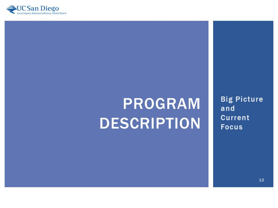 Big Picture and Current Focus 12 PROGRAM DESCRIPTION
