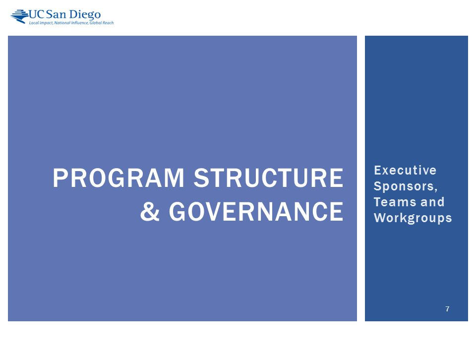 Executive Sponsors, Teams and Workgroups 7 PROGRAM STRUCTURE & GOVERNANCE