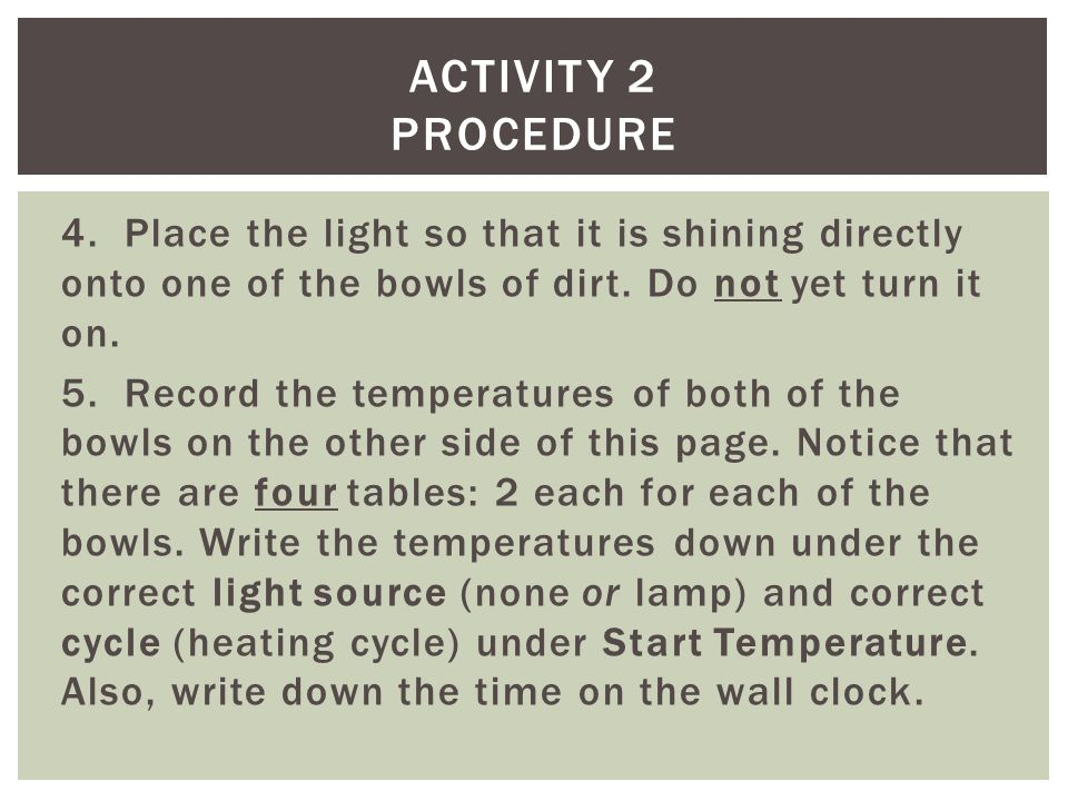 4. Place the light so that it is shining directly onto one of the bowls of dirt.