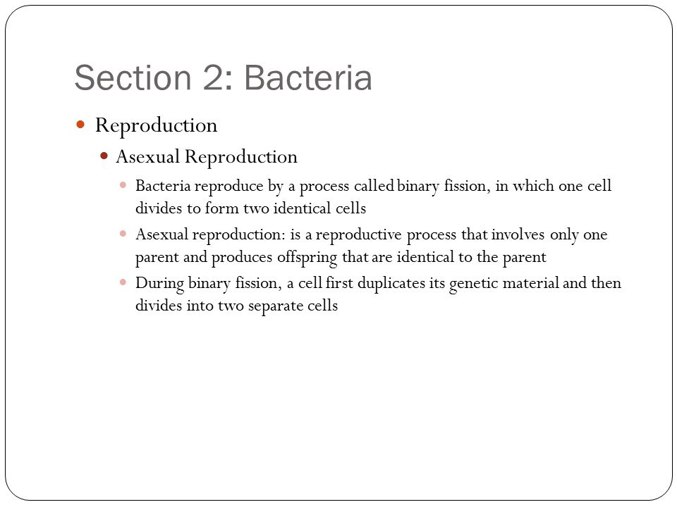 Section 2: Bacteria Reproduction Asexual Reproduction Bacteria reproduce by a process called binary fission, in which one cell divides to form two ide