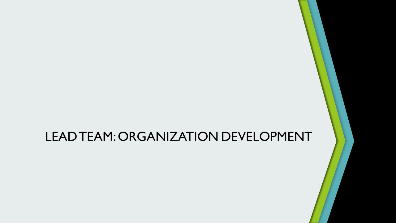 LEAD TEAM: ORGANIZATION DEVELOPMENT
