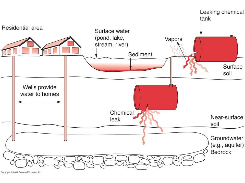 Uranium reduction leads to uranium precipitation and immobilization U 6+ sol U 4+ insol U 6+ sol U 4+ insol