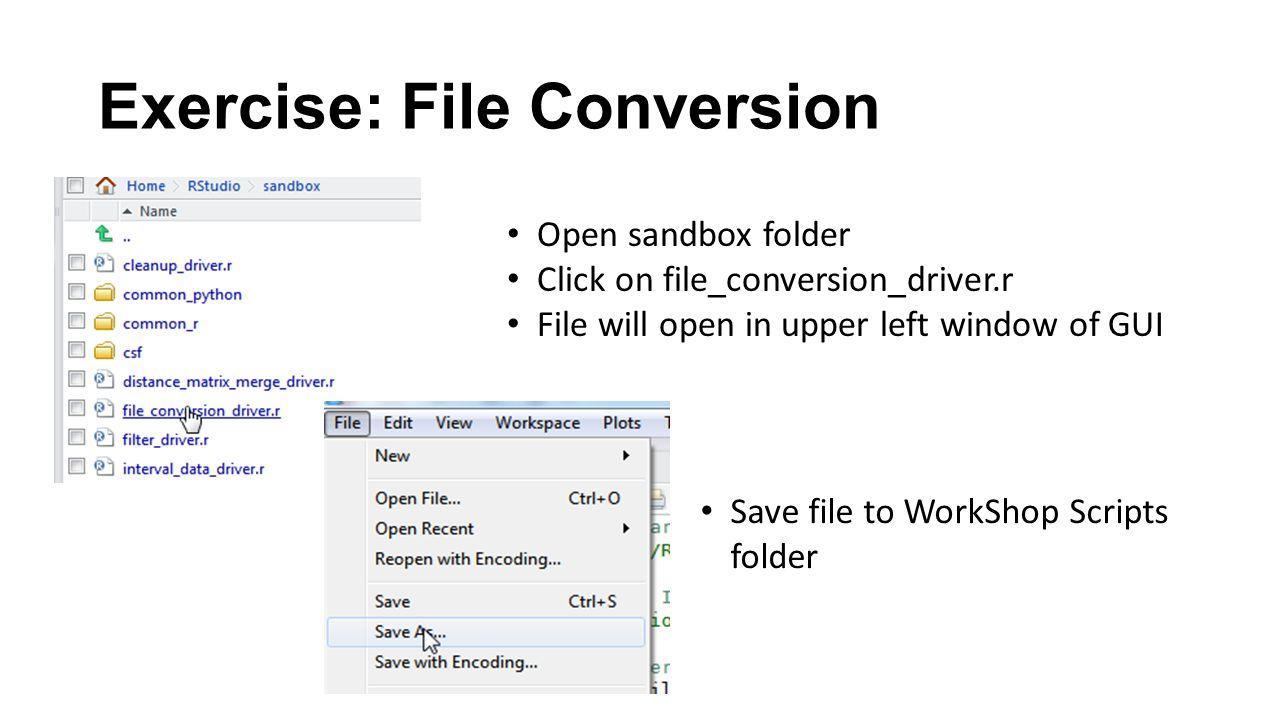 Exercise: File Conversion Open sandbox folder Click on file_conversion_driver.r File will open in upper left window of GUI Save file to WorkShop Scrip