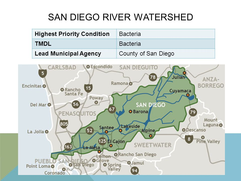 SAN DIEGO RIVER WATERSHED Highest Priority ConditionBacteria TMDLBacteria Lead Municipal AgencyCounty of San Diego
